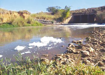 A densa espuma que surgiu às margens do Ribeirão causou surpresa