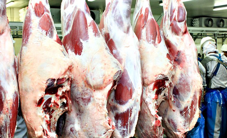 Agro Goiás Carne