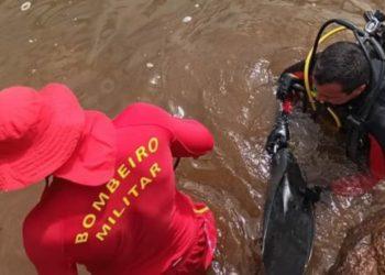 (Foto: Divulgação/ Corpo de Bombeiros)