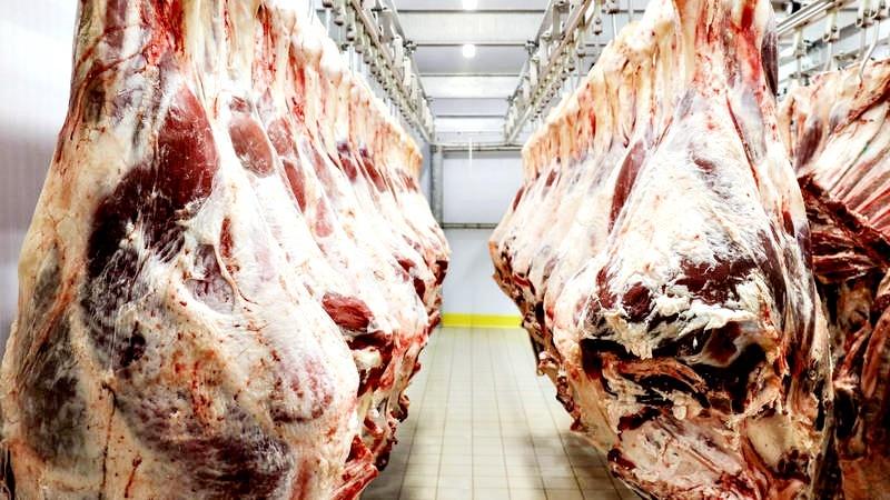 complexo carne