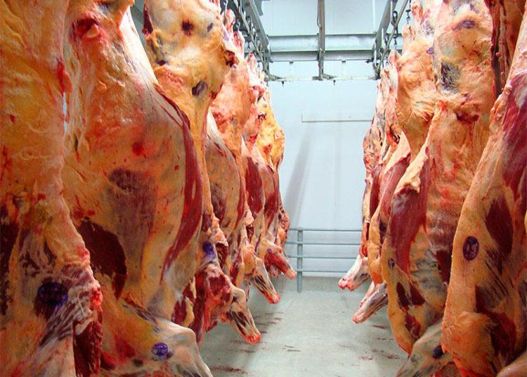 xportações goiás carnes